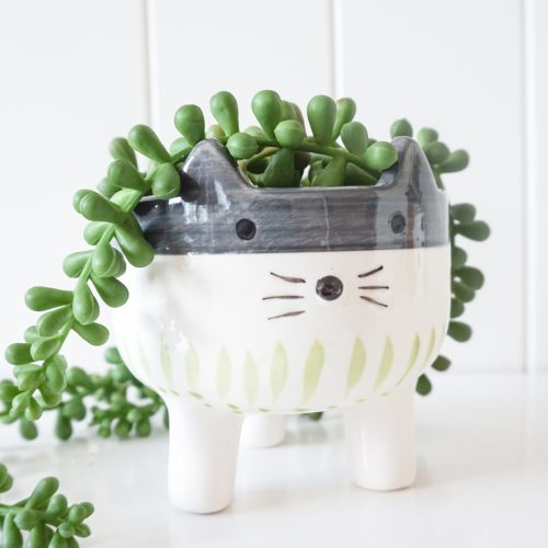 Cat with Whiskers Ceramic Pot Planter