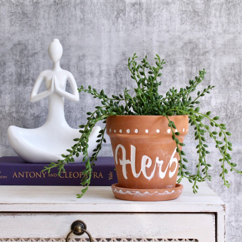 Herb Planter With Saucer