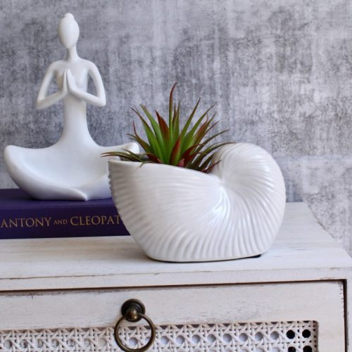 Coastal White Shell Planter Pot