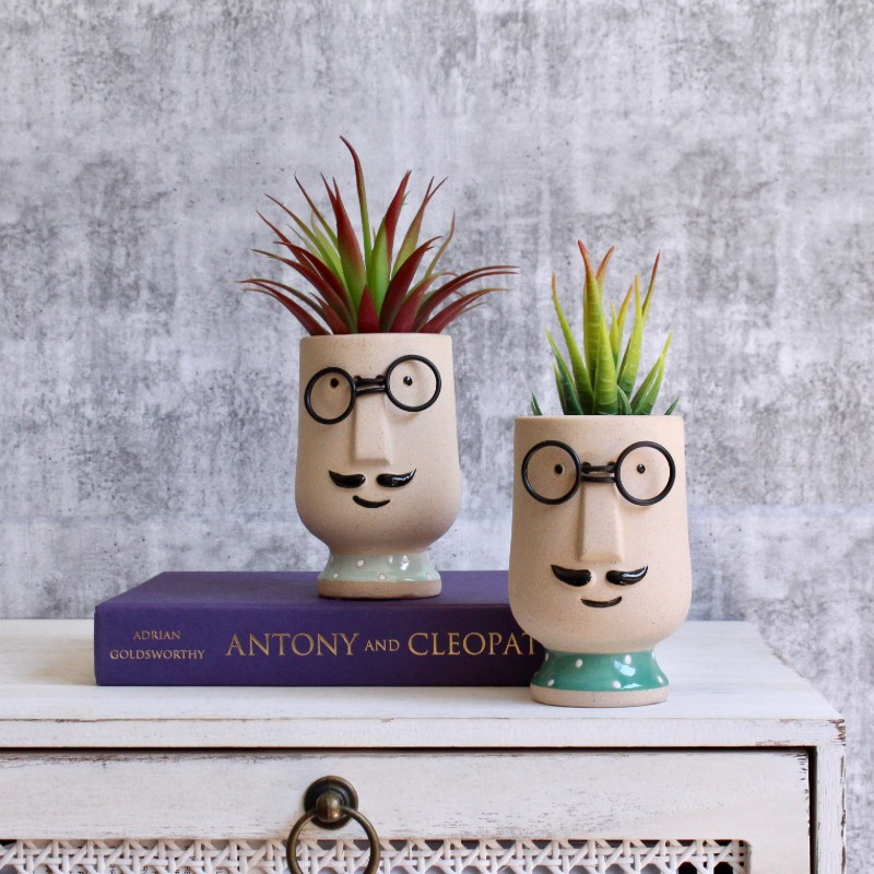 Moustache Man Succulent Planter Set