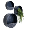 Navy Blue Round Metal Wall planters - Set of 3