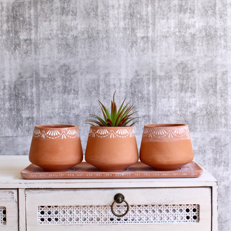 Terracotta Triple Herb Planter With Tray