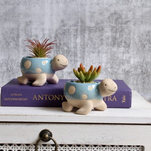 Blue Turtle Planter Set