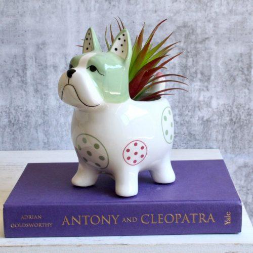 Colourful French Bulldog Planter Pot