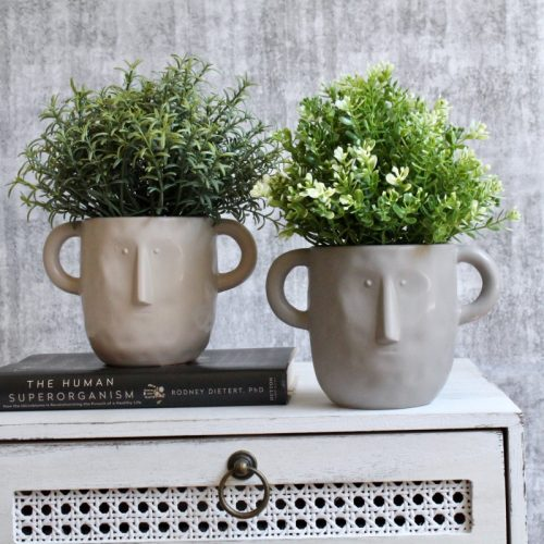 Face Planter With Handles