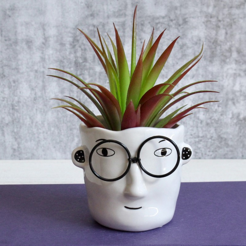 Small Men Face Planter With Glasses
