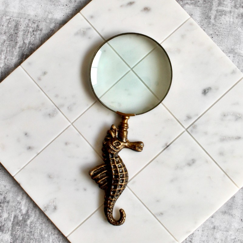 Brass Look Seahorse Magnifying Glass