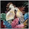 Colourful Cockatoo Duo Framed Canvas Wall Art