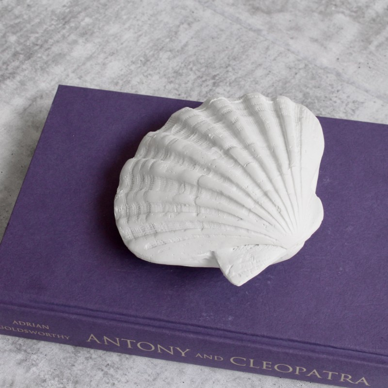 White Poly Sea Shell Ornament
