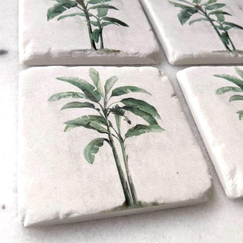 Green Tropical Palm Tree Drink Coaster - Set of 4