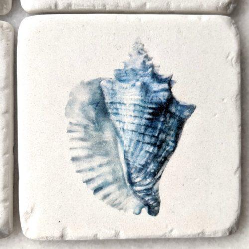 Sea Shell Hamptons Blue Drink Coaster - Set of 4
