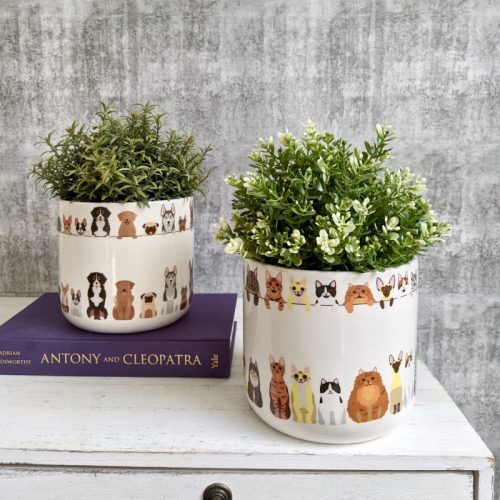 Cats and Dogs Planter Pot