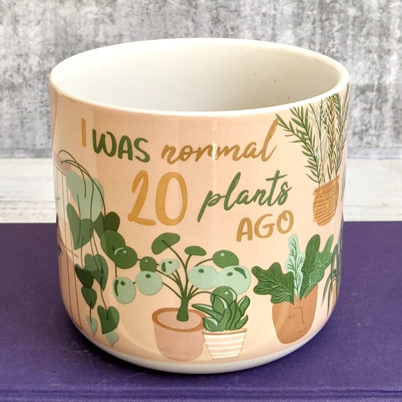 I Was Normal Quote Planter Pot