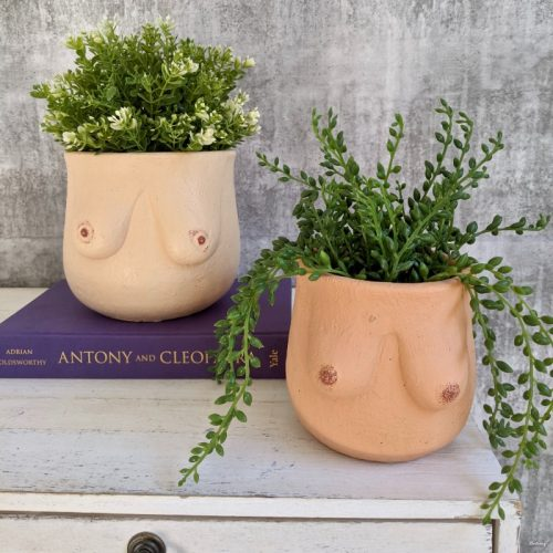 Nude Tan Booby Cement Pot Planter
