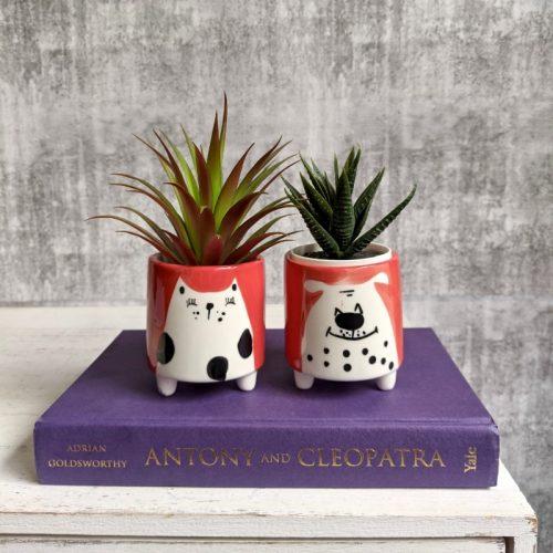 Orange Cat Dog Succulent Planter Pot