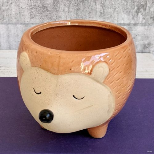 Orange Hedgehog Planter Pot