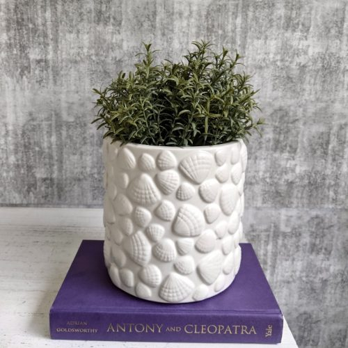 White Sea Shell Planter Pot